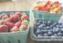 Les incroyables bienfaits des fruits pendant la grossesse