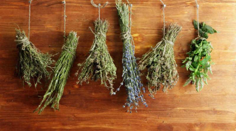 herbes de fertilité